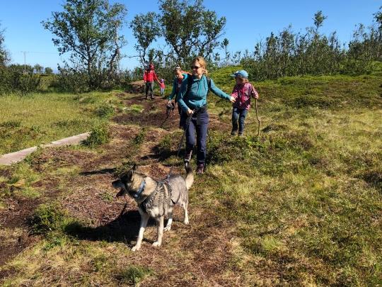 Hiking on Håkøya island with guides and huskies from Tromsø Villmarksenter