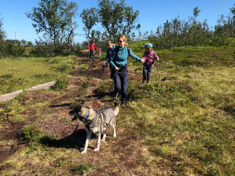 Hiking on Håkøya island with guides and huskies from Tromsø Villmarksenter